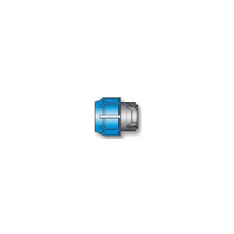 Bouchons 16941 D75