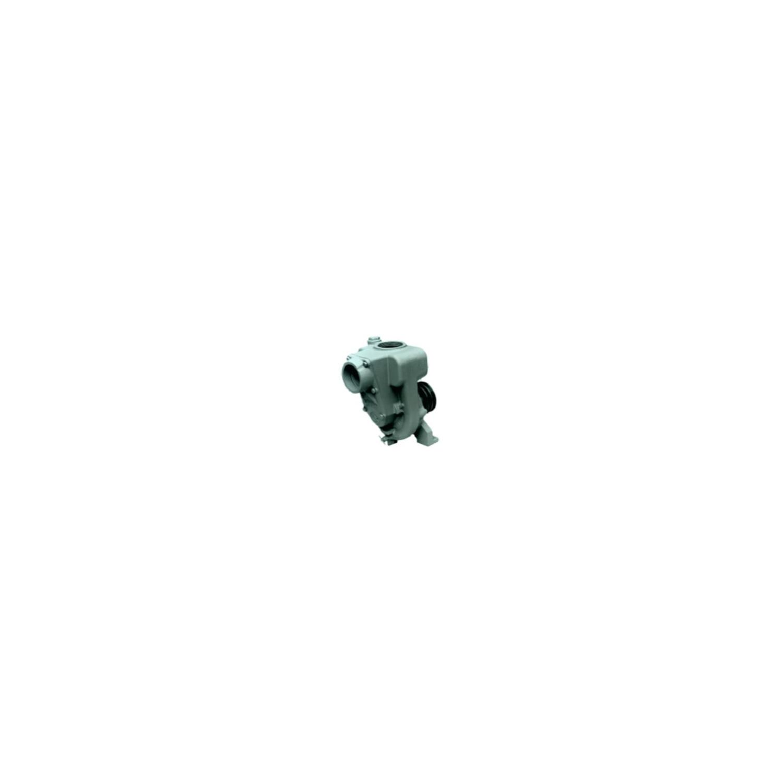 Pompe centrifuge auto-amorçante à arbre nu, 4Kw, 2''1/2