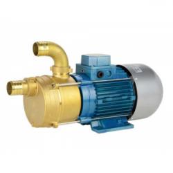 Pompe de transfert laiton - 24V - 0.6cv