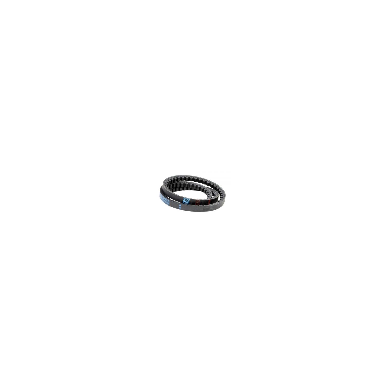 Courroie trapézoidale 13x8 Lg800