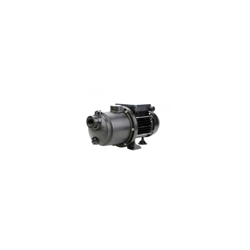 Pompe pour robot 0.85Kw - 230V