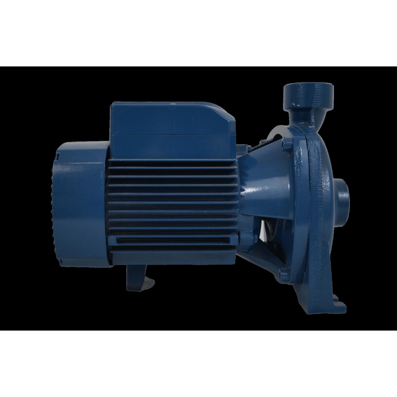 """Pompe de surface centrifuge 230V - 1.5kW - 2"""""""